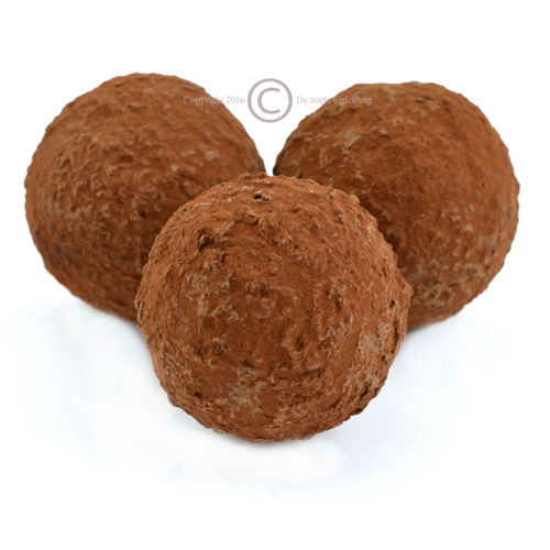 Chocolademelk bal pure chocolade