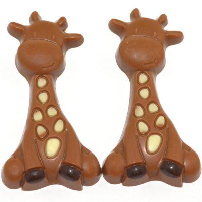 Geboorte chocolade Giraf